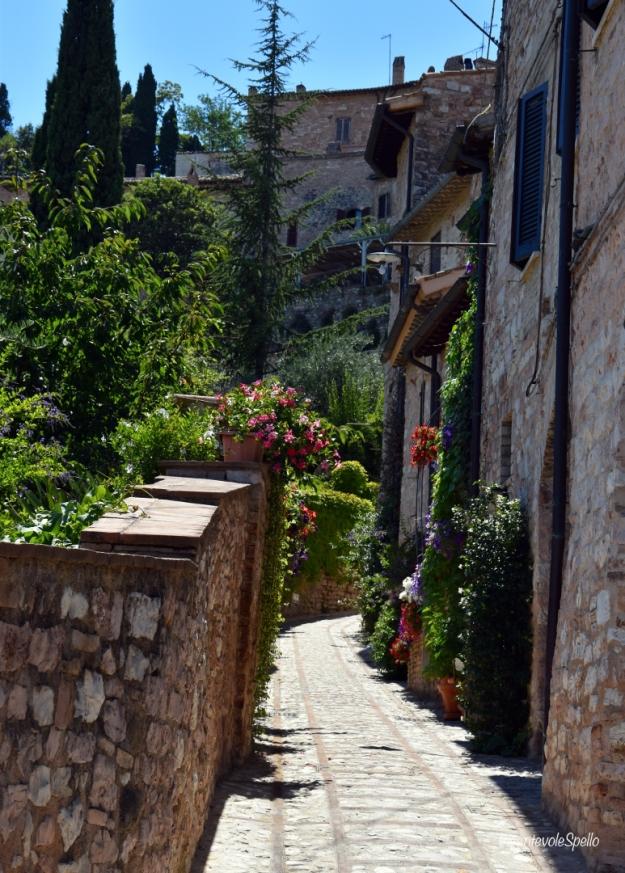 Via Fontanello I - Spello